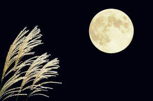 十五夜イベント白寿の湯-4